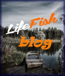 Lifefish Blog