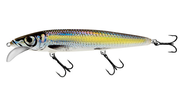SALMO Wobler Floating Silver Chartreuse Shad