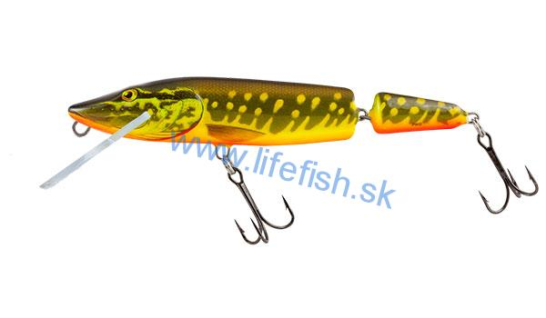 SALMO Wobler Pike Jointed Floating Hot Pike 11cm, 13g