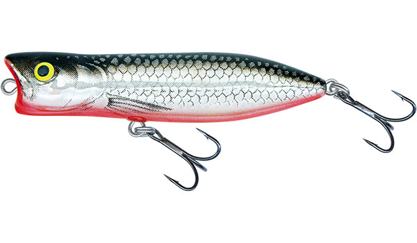 SALMO Popper Rover Floating Chrome Black 7cm, 11g